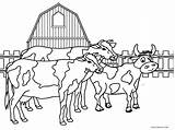 Coloring Farm Animal Animals Printable Toddlers Cows Cool2bkids Whitesbelfast sketch template
