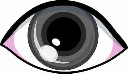Eyes Eye Clip Clipart Gray Grey Cartoon