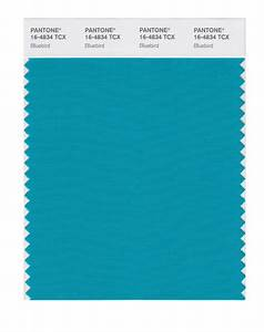 BUY Pantone Smart Swatch 16-4834 Bluebird
