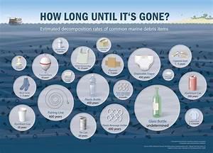 Müll im Meer: So lange dauert es, bis er verrottet ist!