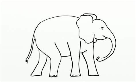 elephant clipart outline trunk up elephant outline png 1 680 215 1 010 pixels card project