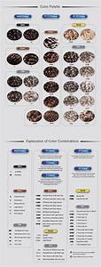 Eyeliner Chart Foxy Silver Color Chart