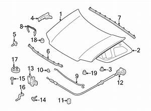 Ford Escape Hood Panel  Hood Panel  Front  Components