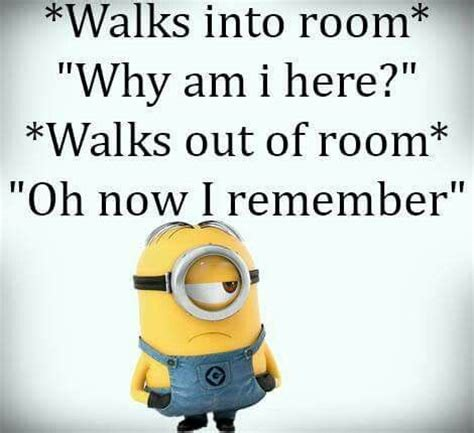 top  minion jokes quotes  humor