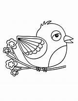 Canary Coloring Bird Tocolor Birds sketch template