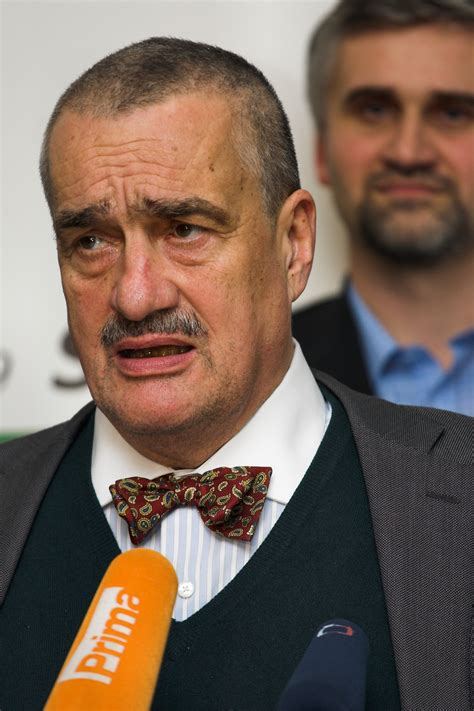 Photos, address, and phone number, opening hours, photos, and user reviews on. File:Karel Schwarzenberg, RR, 20090228.jpg - Wikimedia Commons