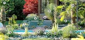 Plantes Exotiques Rustiques : massif exotique rustique pivoine etc ~ Melissatoandfro.com Idées de Décoration