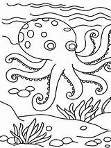Octopus Coloring Pages Printable sketch template