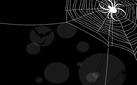 Spider Animated Wallpaper - spiderweb wallpapers wallpaper cave