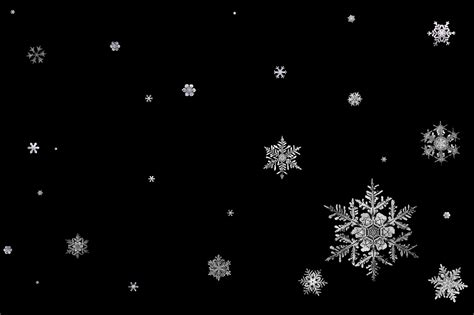 Snowflake Background Black And White by Snow Flake Backgrounds Wallpaper Cave