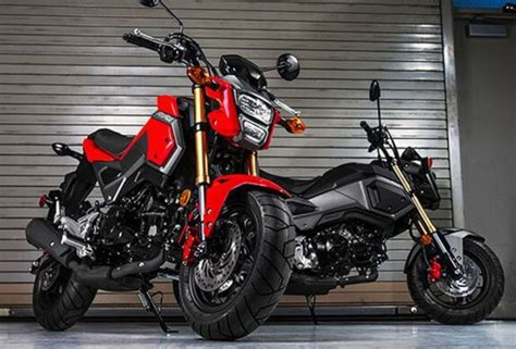 honda grom release date price specs news review