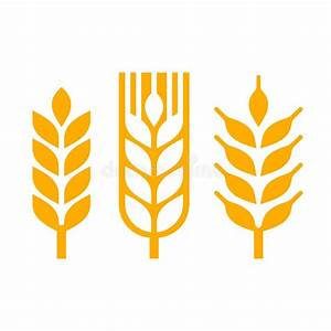 Wheat Ear Spica Icon Set. Vector Stock Vector ...