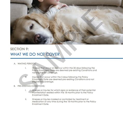 This year, in florida and across the nation,. The Best Pet Insurance of 2018   Reviews.com