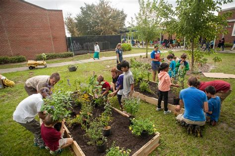 Butterfly Gardens At Local Schools