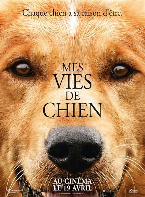 les cinemas aixois aventure mes vies de chien