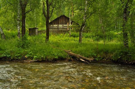 House In The Forest by The House In The Forest Free Stock Photo Domain