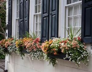 Blumen Für Südbalkon : balkonk sten bepflanzen ideen und beispiele f r sonnige ~ Watch28wear.com Haus und Dekorationen