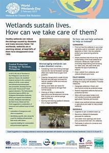 Questions To Ask On An Informational Interview The Wetlands Web