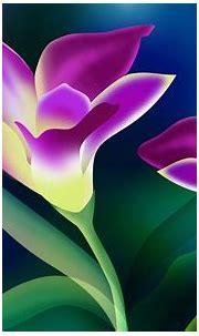 Beautiful Flower Wallpaper Hd Free Download 1704 ...