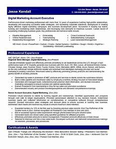 Marketing account executive resume learn more about video for Account executive resume