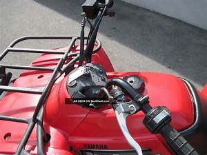 2003 Yamaha Beartracker 250