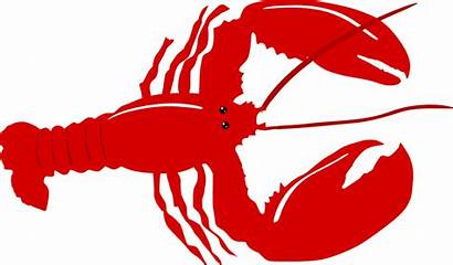 Lobster Transparent Clipart Seafood Kreeft Crayfish Clip
