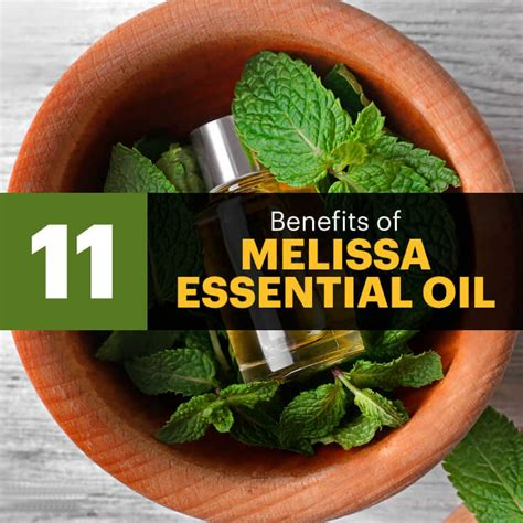 incredible health benefits  melissa essential oil