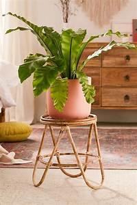 Best, Indoor, And, Outdoor, Plant, Stands, 2021