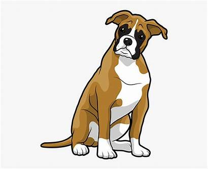 Boxer Dog Clipart Clip Transparent Laying Down