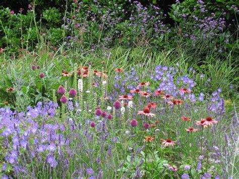 choosing cutting garden plants home flower garden
