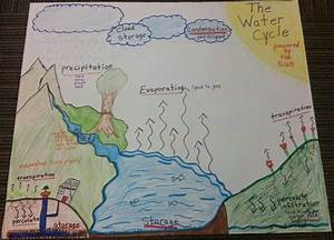 Water Cycle Anchor Chart  With Images