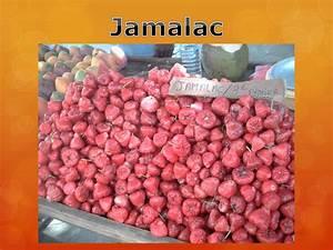 Guide Des Fruits Et Legumes Tropicaux