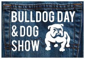 Nov   Ee  Bulldog Ee   Day Dog Show Sf Middle Fundraiser Grouchy Puppy Blog