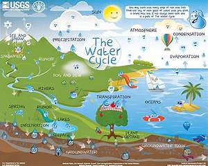 The Water Cycle For Schools