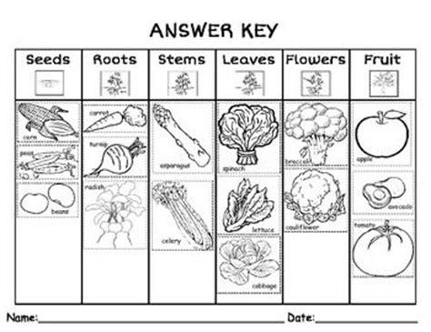 parts   plant  eat sort  labeled images
