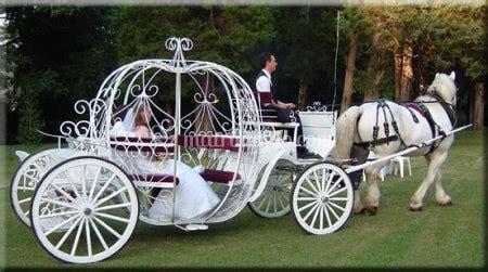carrozza matrimonio renoir noleggio carrozze