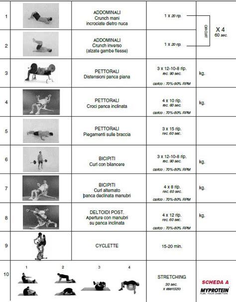 alimentazione per mettere massa come aumentare la massa muscolare con il nuoto programma