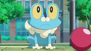 shiny froakie pokemon