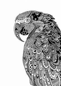coloriages zen animaux adultes With amazing couleur pour un salon 13 dessins black crow tattoo