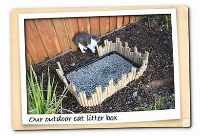 Litter Outdoor Box Cat Cats Boxes Gravel