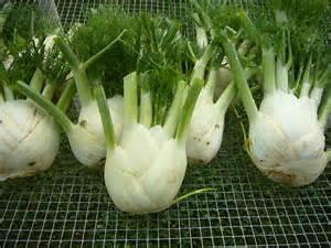 Unusual Summer Vegetables