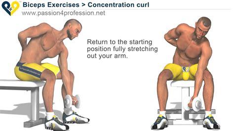 bodybuilding exercises  weights youtube