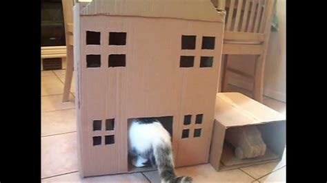 how to house a cat homemade cat tree cat house youtube