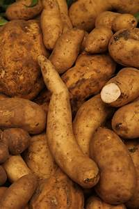 Yams and Sweet Potatoes for Thanksgiving - Delicious Food ...