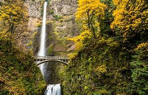 Wallpaper, Autumn, Forest, Trees, Bridge, River, Waterfall