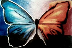 Fire and Ice Butterfly by TennisCourt on deviantART