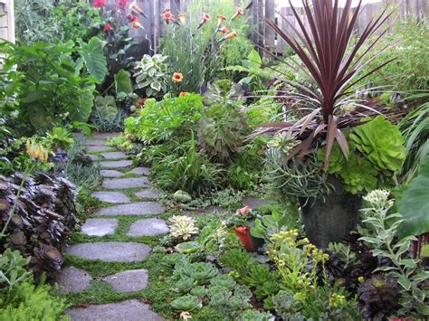 how to create an eco friendly home garden tom corson knowles