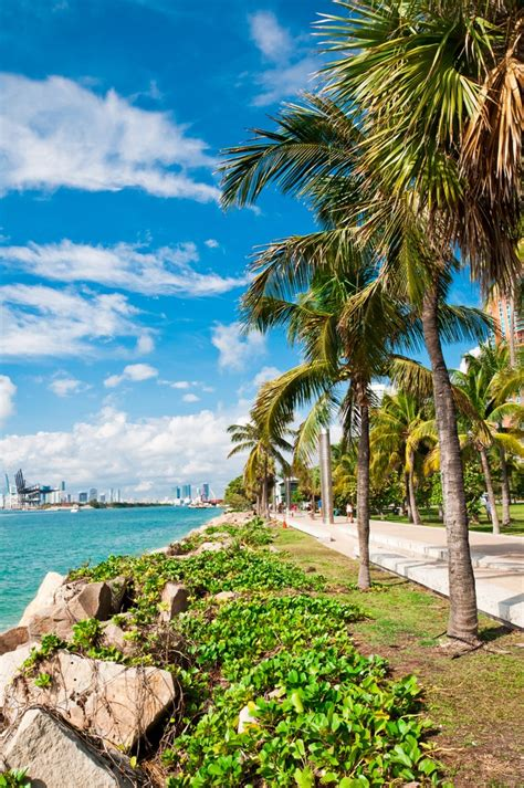 florida most places visit miami beach south crazy tourist