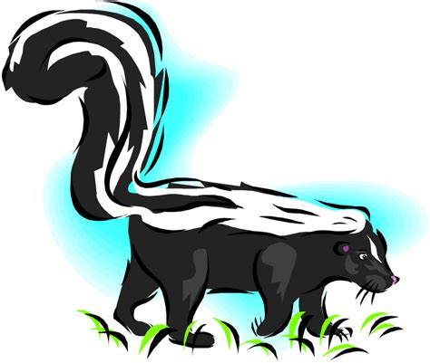 Skunk Clipart Free Skunk Clipart