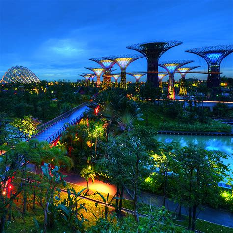 Gardens The Bay Visit Singapore Official Site